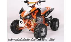 Speedbird Deluxe CXR 110cc 4T R7 aut. c/ marcha atrás