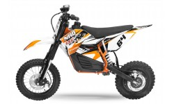 Eco NRG R2 XL500w 48v 12/10 Freno hidraulico motor en rueda