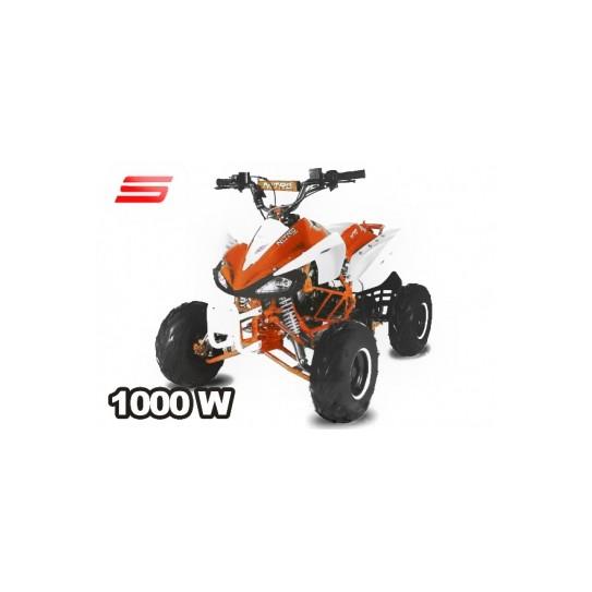 ECO SPEEDY S8 1000W 48V R8