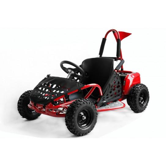 ECO BUGGY GOKID 1000W 48V R6
